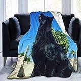 Manta de forro polar ultra suave, el pastor alemán negro, manta cálida para decoración del hogar para sofá o cama, 156 x 127 cm