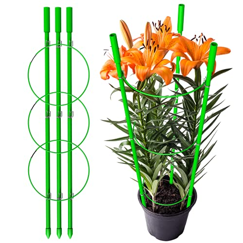 OINT Plant Cage, Tomato Plant Support,Plant Support Cages,Peony Cage with 3 Adjustable Rings, 3 Glass Fiber Pillars Tomato Support Frame, Plant Stakes for Climbing Plants (2 Pieces)