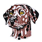 Graphic Dust Dalmatian Iron On Embroidered Patch Applique Animal Cute Love Sweet Dog DIY Jean Jacket Backpack Sign Logo Camping Kids Children