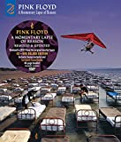 A Momentary Lapse of Reason (Remixed Updated 2019) (CD DVD)