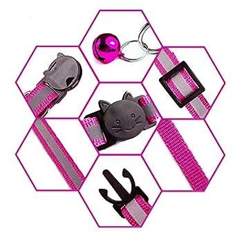 CYKT Breakaway Collier pour Chat en Nylon réfléchissant, Lot de 6, Collier pour Chat Solide, fabriqué en Nylon, Convient pour Les Chats de Petite et Moyenne Taille, sûr et Durable.
