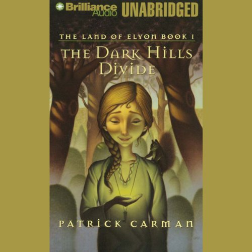 The Dark Hills Divide audiobook cover art