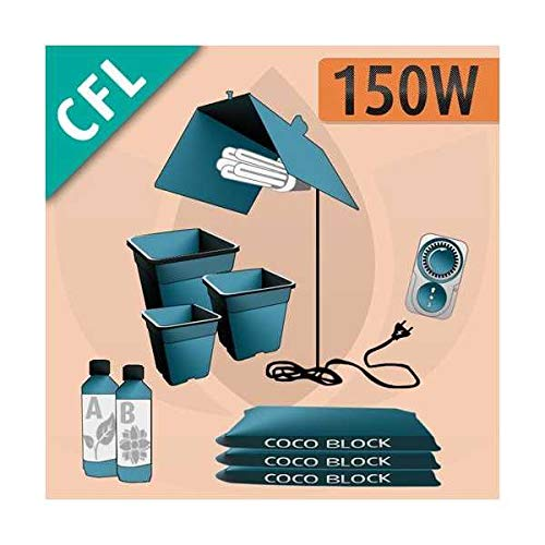 Kit CFL Cocco 150w Coltivazione Indoor Cocco - CFL