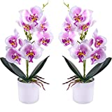 Flores de orquídeas Artificiales - 2 Piezas de Flores de orquídeas Falsas en macetas con jarrón...