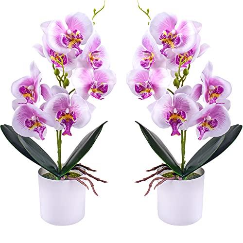 Flores de orquídeas Artificiales - 2 Piezas de Flores de orquídeas Falsas en macetas con jarrón de plástico para Centro de Mesa de Oficina en casa decoración de Fiesta de Boda(Morado)