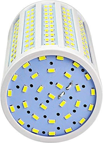 MENGS Bombillas LED