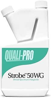 QUALIPRO Strobe 50WG 1 LB (Azoxystrobin)