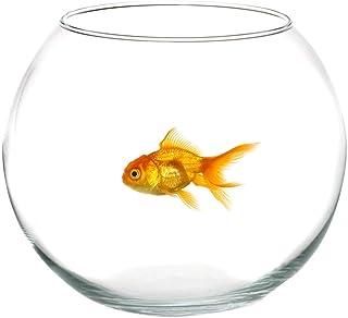 takestop® AMPOLLA Boccia in Vetro ED_9840 Trasparente 25 CM Acquario per Pesci Pesce Rosso CENTROTAVOLA VASCHETTA Vaso Por...