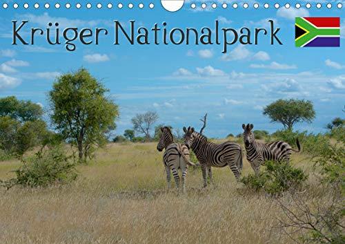 Krüger Nationalpark - Kalender 2021 (Wandkalender 2021 DIN A4 quer)