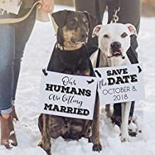 Engagement Announcement For 2 Dogs Our Humans Are Getting Married + Save The Date