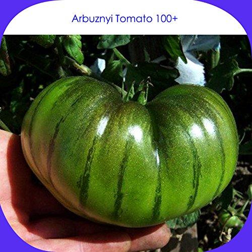(Vert * Ambizu *) Arbuznyi Big Green tomate avec ligne vert foncé Graines bio, Paquet professionnel, 100 graines