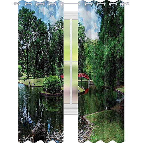Cortina de ventana japonesa japonesa para jardín lago W52 x L63 para oscurecimiento de habitación, para sala de estar