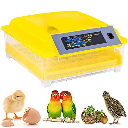 ZIHAOI Termostato Incubadora 48 Huevos Automáticos Incubadora Digital Control Automático De Temperatura para Pollo Aves De Corral Codornices Huevos para Incubar Huevos/para Experimentación