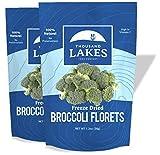 Thousand Lakes Freeze Dried Fruits and Vegetables - Broccoli Florets 2-pack 1.2 ounces (2.4 ounces total) | 100% Florets - No Stems | No Salt Added