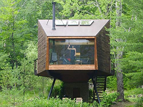 This Glass-Wall Treehouse Has 360-Degree Views