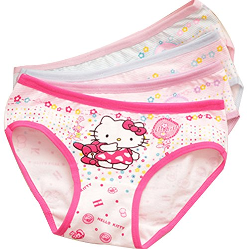 Aliyaer Girls Underwear Toddler Cotton Panties Cute Briefs 4pack (2-4T, 1062)