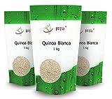 Quinoa Blanca | 3kg Pack ahorro | Cultivo nacional (Valle del Guadalquivir)