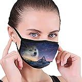 Doge Memes Night Snow Star Unisex Deporte al Aire Libre Boca Mascarilla Lavable Máscara Reutilizable para niños Adultos