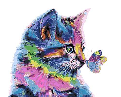 WOWDECOR DIY Malen nach Zahlen für Erwachsene Kinder Mädchen, Katze mit Schmetterling Bunt 40x50 cm Vorgedruckt Leinwand-Ölgemälde (mit Rahmen)