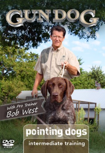 Gun Dog Intermediate Training: Pointing Dogs DVD