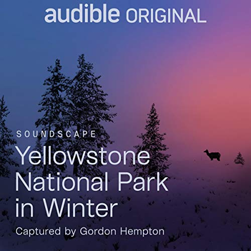 Yellowstone National Park in Winter audiobook cover art