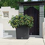 LECHUZA CUBE Cottage 40 Granit Komplett-Set - 3