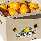 Naranjas maduras para zumo, 20kg con la dulzura apropiada.