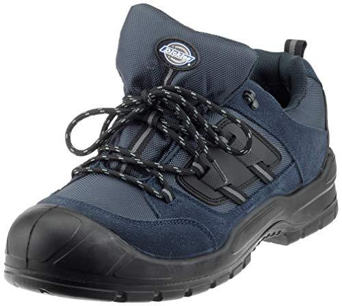 Sicherheitsschuhe Everyday von Dickies, Herrenschuhe mit Stahlkappe an den Zehen, 14, marineblau / schwarz, 1