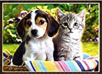 大人のためのDIYクロスステッチ針仕事キット草の中の犬と猫11CT刻印されたクロスステッチ用品キット印刷されたパターン生地刺繡針先工芸品16x20インチ