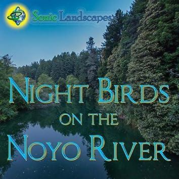 Night Birds on the Noyo River