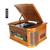 Dab Tourne Disque Vinyle DLITIME avec Radio et FM/USB/RCA/AUX/Télécommande/Lecteur CD/Cassette Platine Vinyle