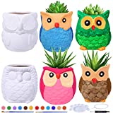 6 Sets DIY Ceramic Owl Succulent Pots Figurines Paint Craft Kit Unpainted Ceramic Bisque Paintable Owl Ceramic Flowerpots with Drainage Hole Ready to Paint for Kids Classroom Craft Project Acticity