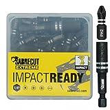 SabreCut SCPA25_21PH 25mm PH2 - Juego de brocas para destornillador de impacto (21 unidades, incluye soporte para puntas y caja de almacenamiento)