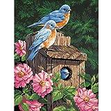 Kit de pintura de diamante 5D taladro completo Animal pájaro bordado dormitorio sala de estar decoración de pared 50x40 cm