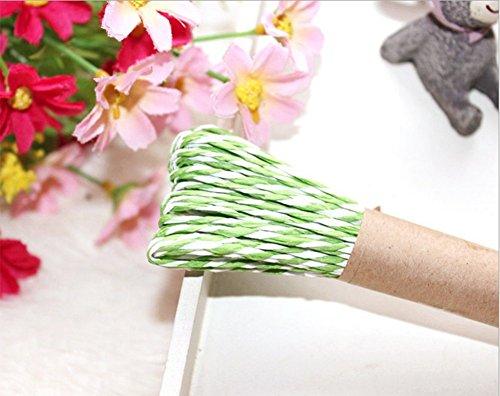 outflower 10m cable cables para cuerda de papel de regalo DIY Crafts cordel azul, papel, verde claro, 10 m