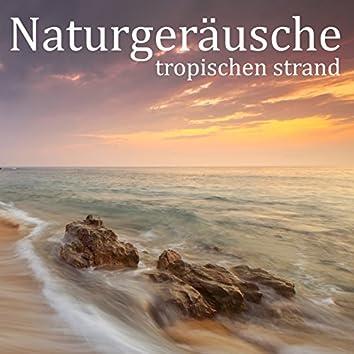 Naturgeräusche: Tropischen Strand