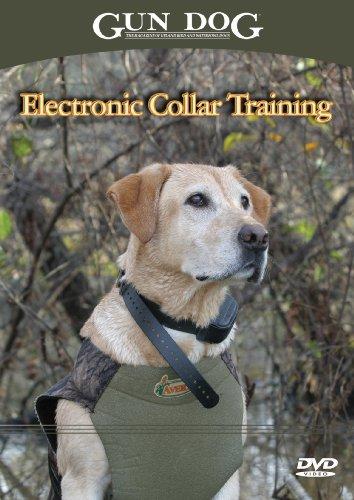 Gun Dog Electronic Collar Training DVD