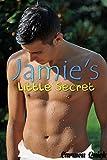 Jamie's Little Secret (English Edition)