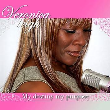 My Destiny My Purpose