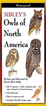 [(Sibley's Owls of North America)] [By (author) David Sibley ] published on (February, 2009)