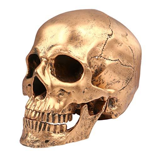PRETYZOOM Halloween Resina Modelo de Calavera Cabeza Humana Realista Estatua de Calavera para Fiesta Decoración de Esqueleto de Casa Embrujada Complicada (Dorado)