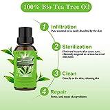 Zoom IMG-2 tea tree oil olio puro