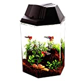 Hexagon Fish Tanks and Aquariums 1.6-Gallon Made from Durable Plastic Material - Skroutz Deals