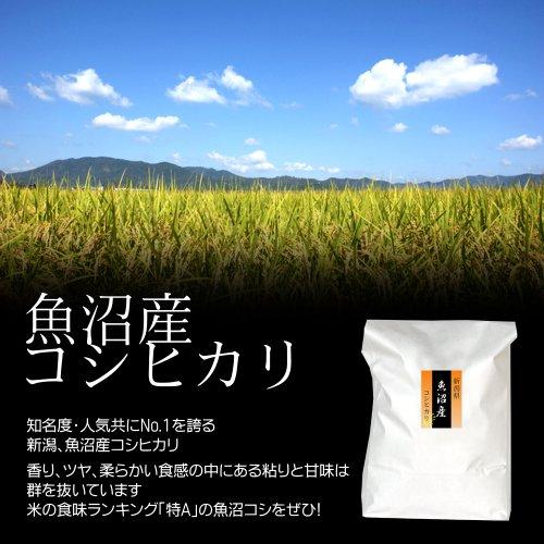 【ECO梱包】新米 29年産 魚沼産コシヒカリ ECO・エコパック(エコ梱包・簡易包装) 白米(精米) 2kg