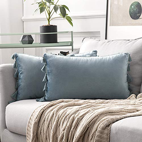 MIULEE Pack of 2 Velvet Soft Solid Decorative Throw Pillow Cover with Tassels Fringe Boho Accent Cushion Case for Couch Sofa Bed 12 x 20 Inch Light Blue