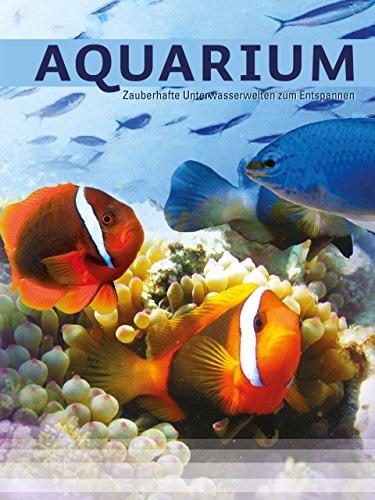 Aquarium - Zauberhafte Unterwasserwelten
