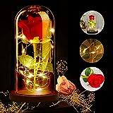 ASANMU Kit de Rosas, Bella y la Bestia Rosa de Seda Roja y luz LED con Pétalos Caídos en Cúpula de Cristal sobre una Base de Madera Mejor Regalo para día de San Valentín, Navidad, Cumpleaños (Roja)
