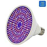 Les LED améliorées cultivent une ampoule, une lampe à spectre complet pour les...