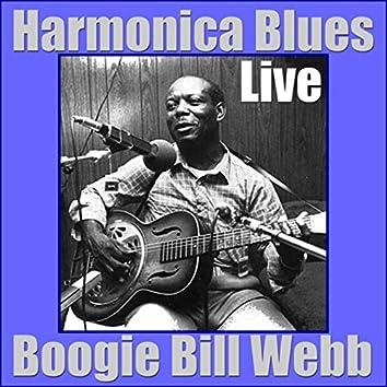 Harmonica Blues (Live)