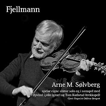 Fjellmann